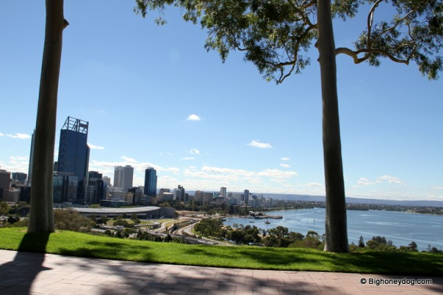 Perthcity+river-view